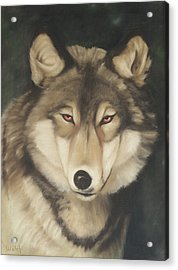 Red Eyes Acrylic Print by Steven Welch