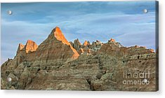 Red Faced Panorama Acrylic Print