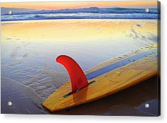 Red Fin Sunset Acrylic Print by Sean Davey