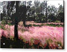 Red Fire Grass Field Gulf Coast Florida Detail Acrylic Print by G Linsenmayer