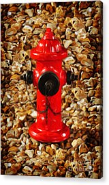 Acrylic Print featuring the photograph Red Fire Hydrant by Andee Design