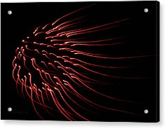 Acrylic Print featuring the photograph Red Firework  by Chris Berry