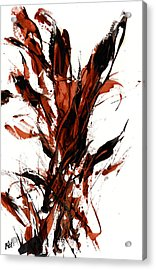 Red Flame 66.121410 Acrylic Print