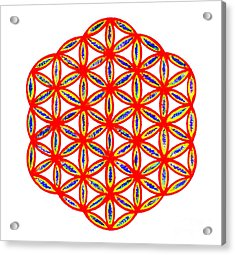 Red Flower Of Life Acrylic Print by Chandelle Hazen