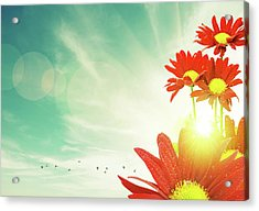 Acrylic Print featuring the photograph Red Flowers Spring by Carlos Caetano