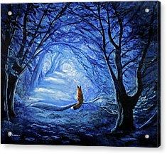 Red Fox In Blue Cypress Grove Acrylic Print