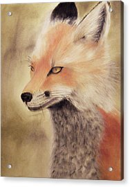 Red Fox Acrylic Print by Joanne Giesbrecht