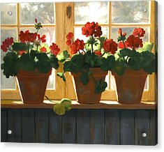 Red Geraniums Basking Acrylic Print by Linda Jacobus