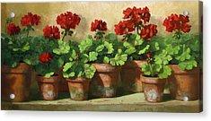 Red Geraniums Acrylic Print by Linda Jacobus