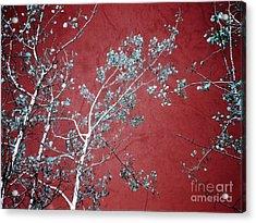 Red Glory Acrylic Print by Tara Turner