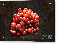 Red Grapes Acrylic Print by Andee Design