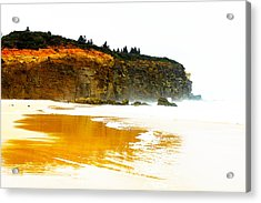 Red Head Beach Acrylic Print by Susan Vineyard
