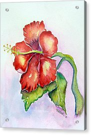 Acrylic Print featuring the painting Red Hibiscus by Patricia Piffath