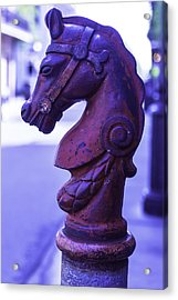 Red Horse Hitching Post Acrylic Print by Garry Gay