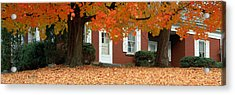 Red House And Maple Trees Along Route Acrylic Print