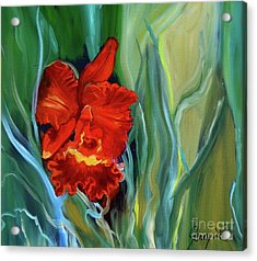 Red Jungle Orchid Acrylic Print