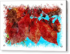 Acrylic Print featuring the photograph Red Leaves by Jean Bernard Roussilhe