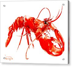 Red Lobster Acrylic Print by Suren Nersisyan