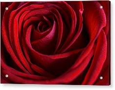 Red Love Acrylic Print