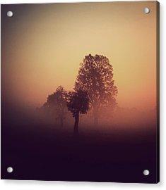 Red Mist Acrylic Print by Yo Choowa