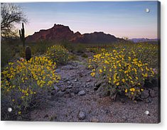Red Mountain Dusk Acrylic Print