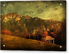 Red Mountain Acrylic Print by Endre Fulop