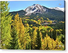 Acrylic Print featuring the photograph Red Mountain Fall Color by Ray Mathis