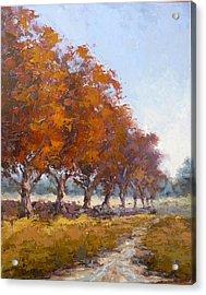 Red Oak Avenue Acrylic Print by Yvonne Ankerman