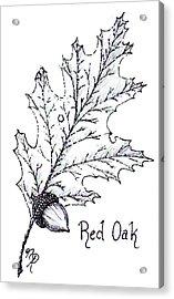 Red Oak Leaf And Acorn Acrylic Print