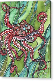 Red Octo Acrylic Print by Tamara Phillips