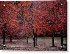 Red October Acrylic Print