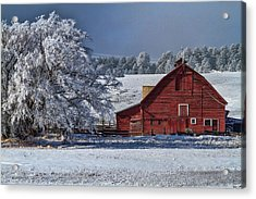 Red On White Acrylic Print