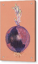 Red Onion Acrylic Print