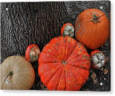 Red Orange Acrylic Print by JAMART Photography