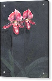Red Orchids Acrylic Print