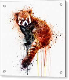 Red Panda Acrylic Print by Marian Voicu