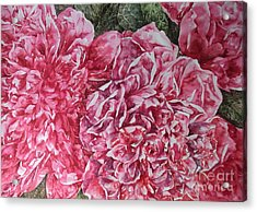 Red Peonies Acrylic Print