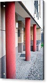 Red Pillars Acrylic Print by Tom Gowanlock
