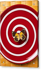 Red Plate And Yellow Black Butterfly Acrylic Print