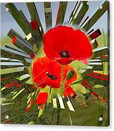 Red Poppies Go Digital Acrylic Print