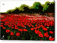 Red Poppies Landscapes Flowers Emerald Isle Multimedia Fine Art Acrylic Print by G Linsenmayer