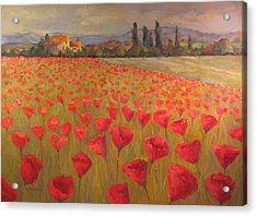 Red Poppy Field Acrylic Print by Sam Pearson