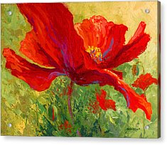 Red Poppy I Acrylic Print by Marion Rose