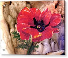 Acrylic Print featuring the painting Red Poppy by Sherry Shipley