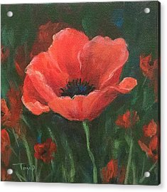 Red Poppy Acrylic Print by Torrie Smiley