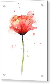 Red Poppy Watercolor Acrylic Print