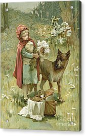 Red Riding Hood Acrylic Print by John Lawson