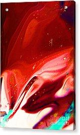 Red River Acrylic Print by Vadim Grabbe
