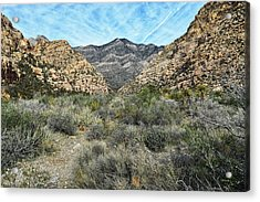 Acrylic Print featuring the photograph Red Rock Canyon - Nevada by Glenn McCarthy Art and Photography