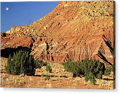 Acrylic Print featuring the photograph Red Rock New Mexico by AnnaJanessa PhotoArt
